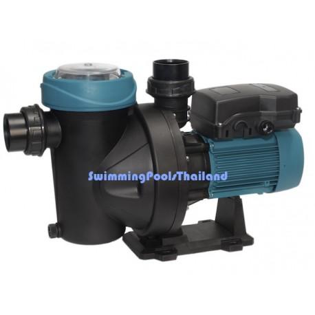 Silen I.  0.33HP pump