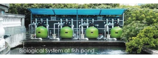 Fish pond filter systems